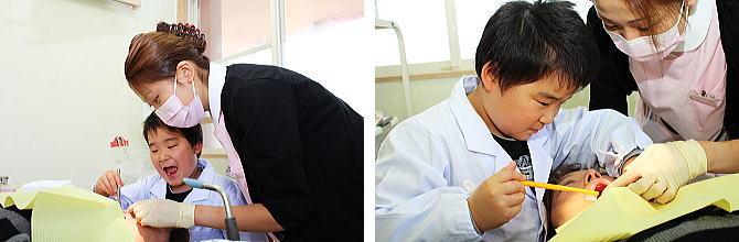 虫歯がないか鏡でチェックするかわいい歯医者さん