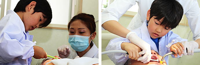 虫歯の診察をしているかわいい歯医者さん